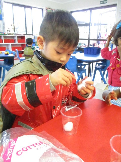 Making mini seed greenhouses