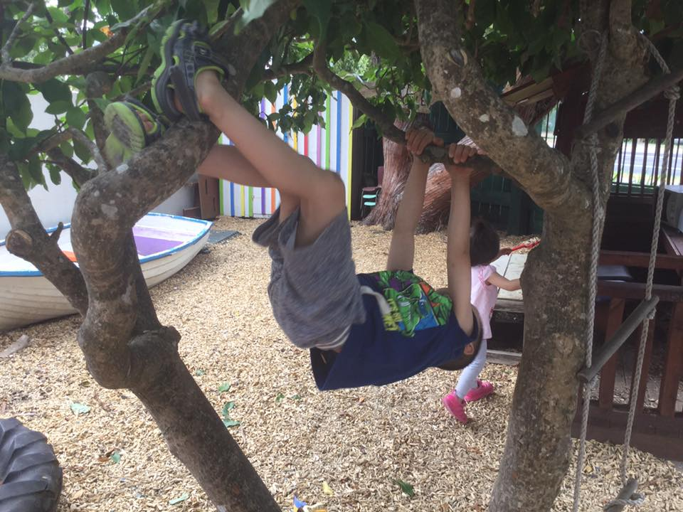 Tree climbing and flipping